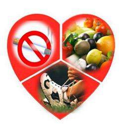 Правильные привычки - залог здоровья
