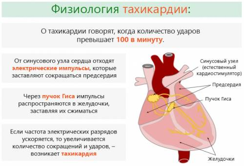 В зависимости от того чем вызвано учащение сердечных сокращений выделяют физиологическую и патологическую тахикардию